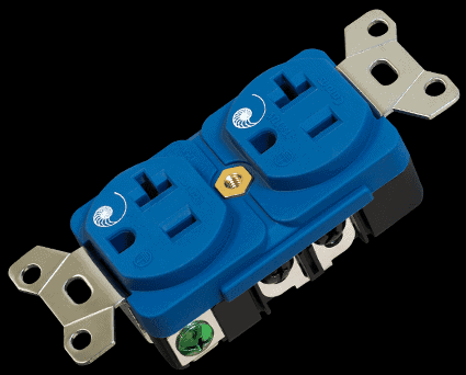 Cardas Power outlet side